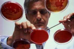 Факторы риска развития острого лимфолейкоза