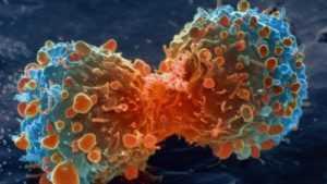 Ингибиторы протеазы молекул 3-C