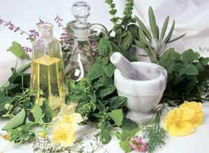 Травяные отвары против симптомов