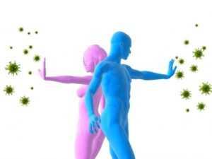 Как вирус действует на иммунную систему