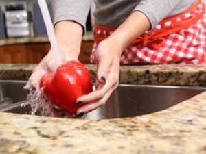 Как защититься от инфекций E.coli, вызванных пищей