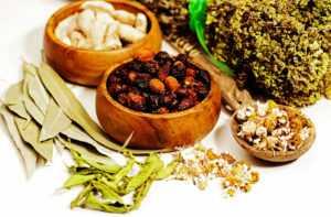 Травы и простата – природное лечение