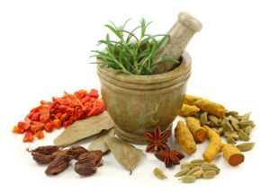 Травы и специи для желудка