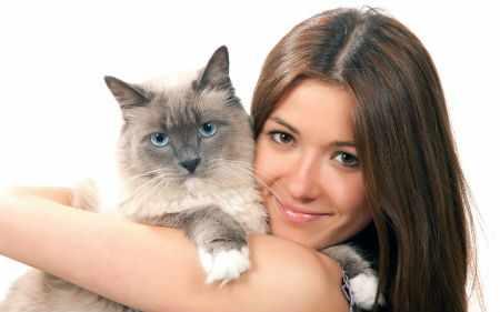 Какими глистами можно заразиться от кошки