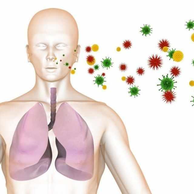 Причины и этиология пневмоцистоза