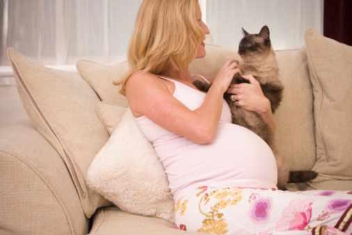 Токсоплазмоз у беременных женщин