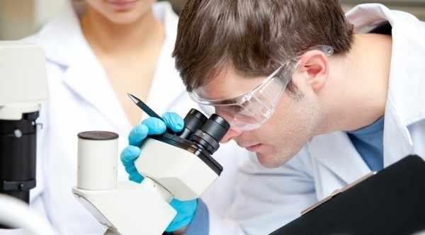Эксперименты ученых