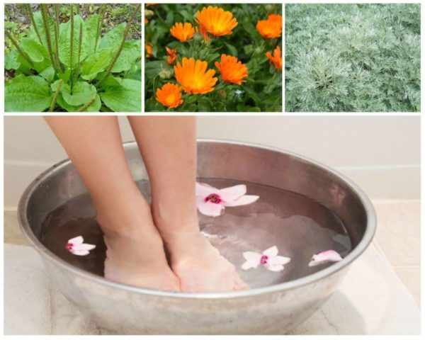 Ванночки с отварами трав от грибка ног