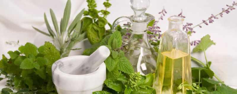 Рецепты народной медицины от потничков
