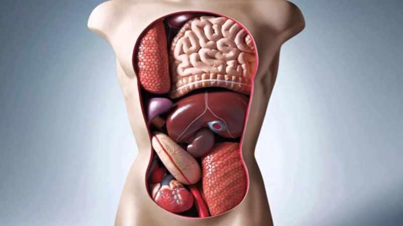 Неполадки внутри организма