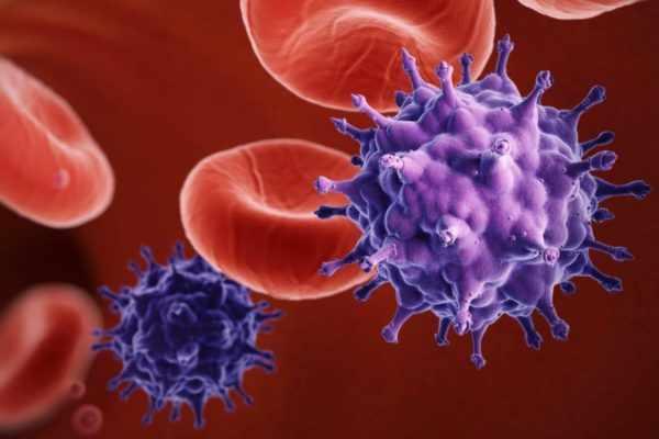 Инфицирование цитомегаловирусом
