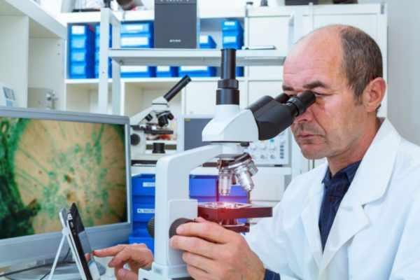 Гистологический метод исследования