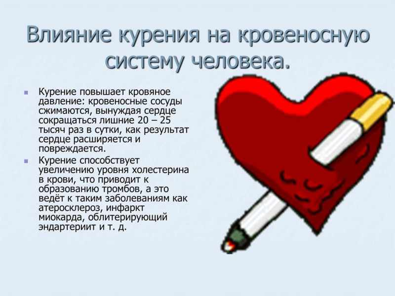Курение негативно сказывается на всей кровеносной системе