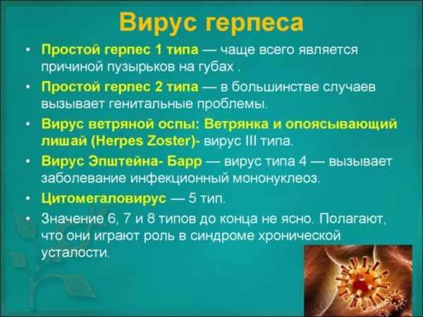 Разновидности вируса герпеса
