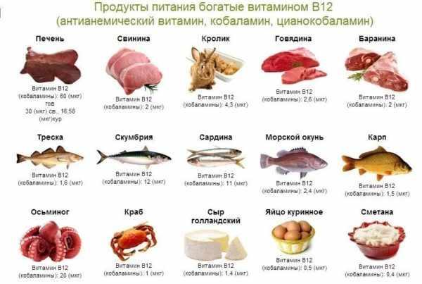 Витамин В 12 в продуктах