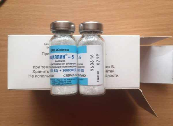 Бициллин-5